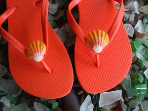 Shells on your toes