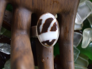 Hawaiian shell chip ring