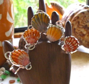 Hawaiian Sunrise shell rings