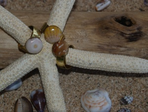 Hawaiian shells resin rings