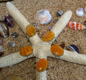 Hawaiian Sunrise shell chip resin rings, adjustable, sterling silver
