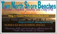 two north shore beaches